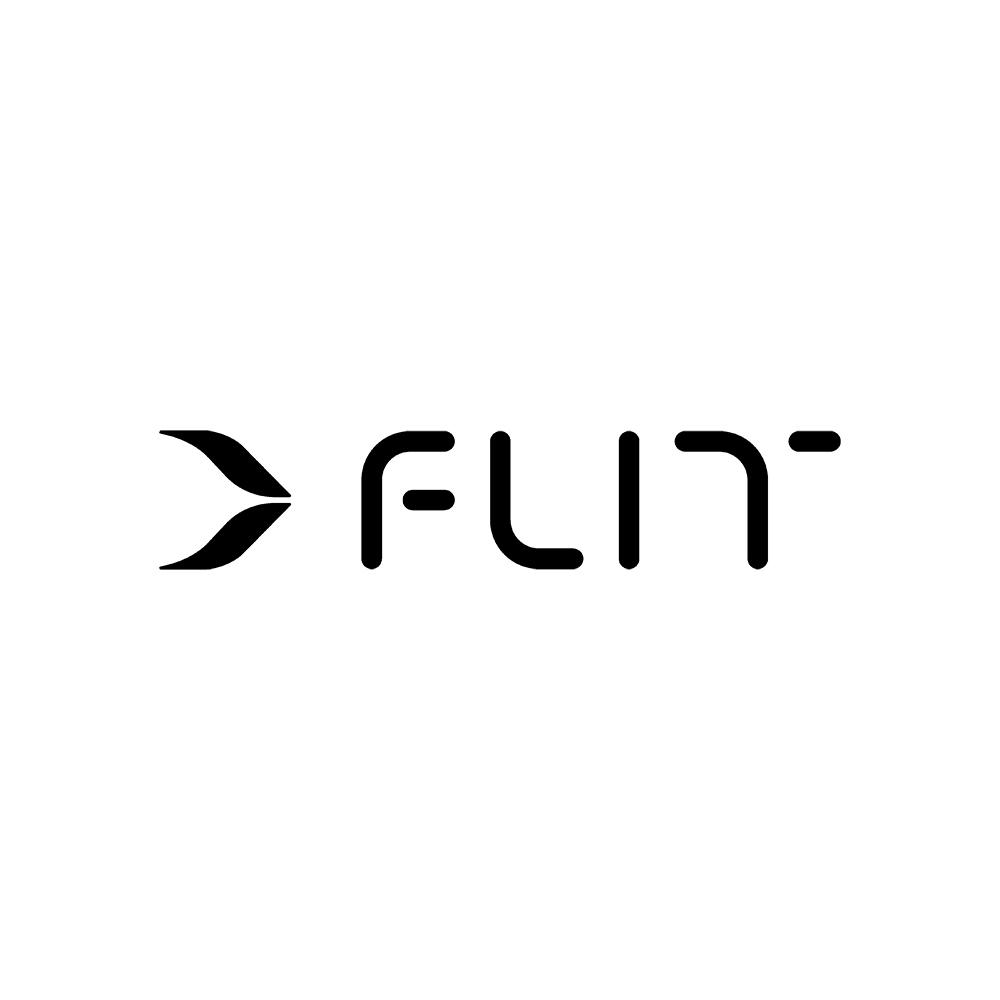Flit logo, new